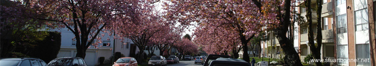 French Street, Marpole, Vancouver West, BC, Canada