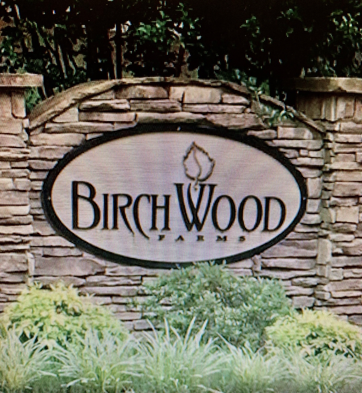 321 Birchwood Farms Ln, Dallas, GA, 30132 United States