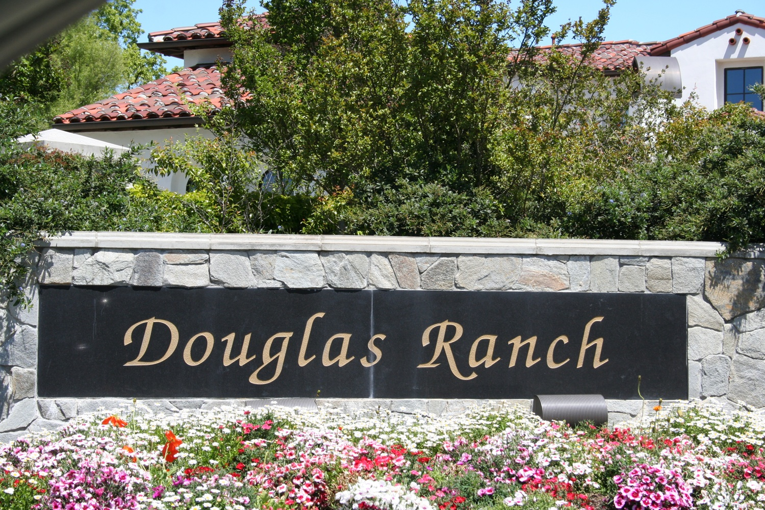 Douglas Ranch Listings