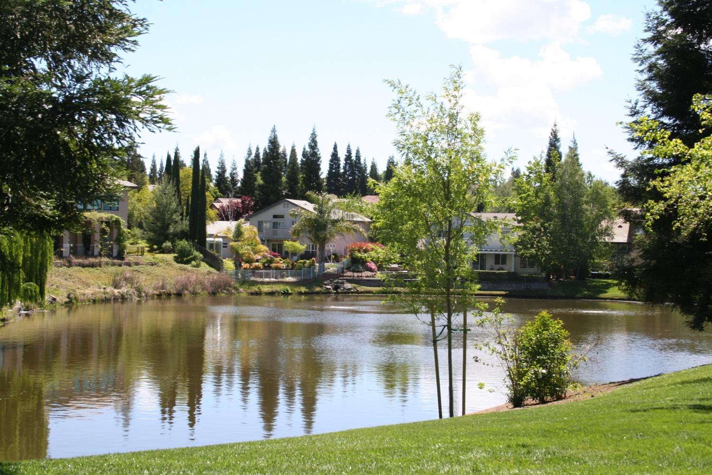 Treelake Village