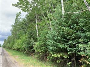 4715 Birchgrove Road, Cumberland, ON, K4B 1R3 Canada