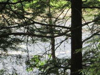 5 Lot 3 River Breeze Lane, Eddington, ME, 04428 United States