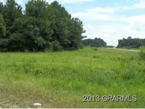 Lot Stantonsburg Road, Farmville, NC, 27828
