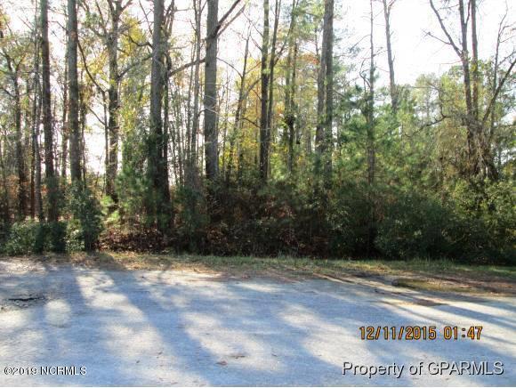 5P 0 Urban Estates Drive, Grifton, NC, 28530