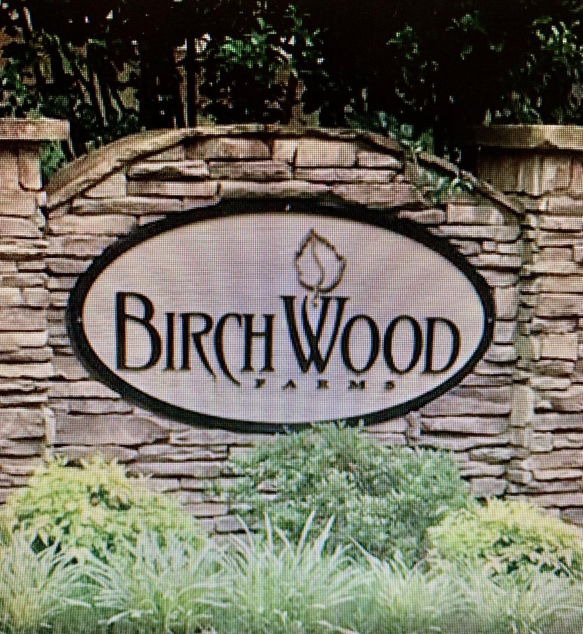 208 Birchwood Farms Ln, Dallas, GA, 30132 United States